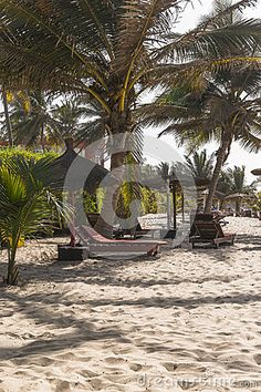 Sunbeds on the tropical beach on the Atlantic Ocean in Gambia. Africa