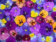 Love the blues and purple with orange and yellow.