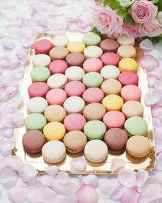 colorful macarons, so pretty