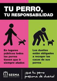 Resultado de imagen para aviso de mascotas recoger sus escremento