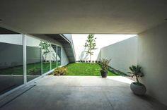 Casa IPE: Jardines de estilo moderno por P+0 Arquitectura
