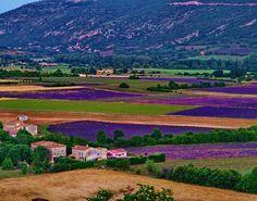 village of sault provence france - Google Search