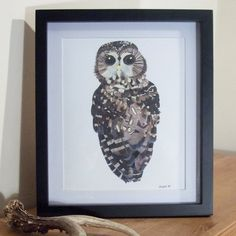 Northern Spotted Owl Illustration Print - £15. Available here; https://www.etsy.com/listing/117943722/northern-spotted-owl-illustration-print