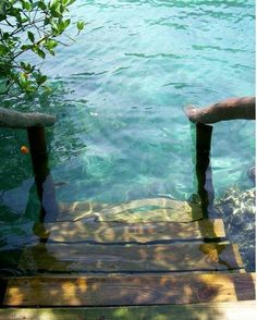 Stairs to clear, cool blue water. -- For the vacation home I'll have some day. I need to be close enough to water to build this!