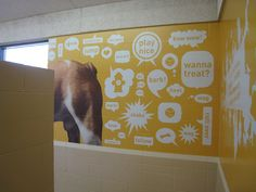 Fun design for the interior of a animal shelter. Make thing bright and inviting instead of sad and depressing.