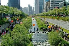 The Cheonggyecheon River recently daylighted is now a central downtown opens space that funnels floodwaters and provides wildlife habitat.  Water that constantly floods subways is pumped into the waterway and during dry spells, treated wastewater courses through.