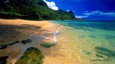 Красивый пляж, пляж Cool вектор