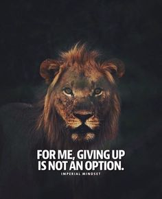 Inspirational Positive Quotes :Giving up is not an option..