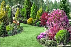 Online DIY landscaping too Beautiful Gardens, Lawn And Landscape, Diy Backyard Landscaping, Gorgeous Gardens, Landscape Design, Outdoor Gardens, Front Yard Landscaping, Garden Planning, Garden Design