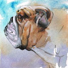 "Daily Paintworks - ""No. 25 Bulldog"" - Original Fine Art for Sale - © Annabel Chance"