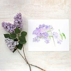 Lilacs Watercolor Print by artist Kathleen Maunder (trowelandpaintbrush)