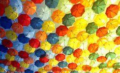 空を埋め尽くすカラフルな傘。ポルトガルの街で開かれるお祭り。