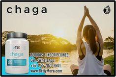 #Chaga es un maravilloso producto que ayuda a protegernos de los radicales libres y ofrece miles de beneficios para la salud.  #B1000F