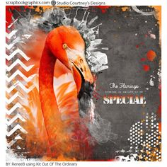 Love Mixed Media and want it in a Digital Kit?  Gesso, watercolor paint, scribbles and splats can all be found in Courtney's Designs new Bundle Out of the Ordinary http://shop.scrapbookgraphics.com/out-of-the-ordinary-bundle-bonus.html