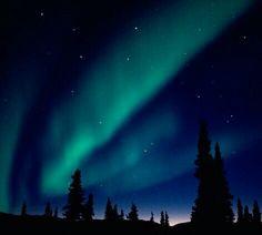 Sternenhimmel, Traumreise, Urlaubsfotos, Polarlichter, Reisen, Nachthimmel,  Schöne Orte, Traumbilder, Wunschlisten, Naturwallpaper, Natur, Aurora  Borealis, ... 9d20e0b5f5