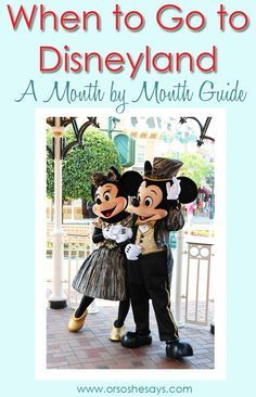 This is what you can expect at Disneyland, each month of the year!! When To Go To Disneyland: A Month By Month Guide www.orososhesays.com #disneyland