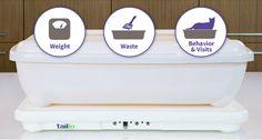 tailio: monitoriza la orina de tus gatos para detectar enfermedades