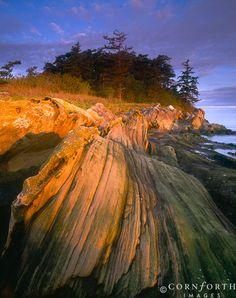 Puget Sound    Washington