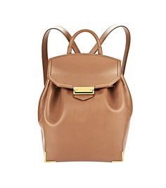 be0638356 Alexander Wang Prisma Skeletal Backpack ($1050) in Latte with Yellow Gold  Structured Bag,