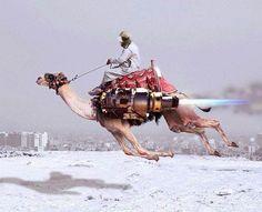 cameljet