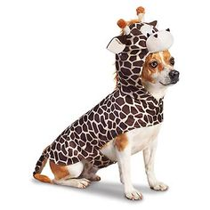 Petco Giraffe Halloween Dog Costume