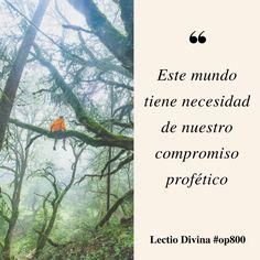 Este mundo tiene necesidad de nuestro compromiso profético #lectiodivina #op800 http://www.op.org/es/lectio/2016-08-04