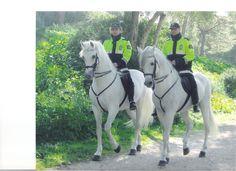 Patrulla policía montada  parque del castillo de Bellver  Palma Mallorca Spain
