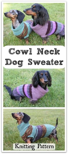 Crafty Crochet And Things Crochet Dachshund Sweater Guinness The