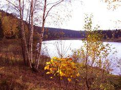 Herbst am Stausee