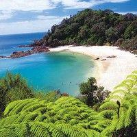 Whale Bay, Tutukaka, Close to Whangarei, North Island, New Zealand ~~ New Zealand Beach, North Island New Zealand, New Zealand Travel, Auckland, The Beautiful Country, Beautiful Places, Beautiful Beach, Places To Travel, Places To See