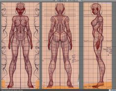 Female character 3D wireframe front, back, side Character Reference Sheet, Character Model Sheet, Female Reference, Anatomy Reference, 3d Character, Body Reference, Zbrush Character, Character Design Challenge, Character Design Cartoon