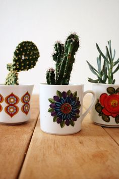Vintage mugs and succulents