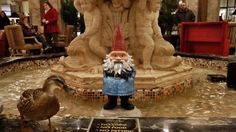 PeabodyMemphis shhh. I am trying to hug this one. Don't. Want. To. Startle. It. #memphis7 feb 2014