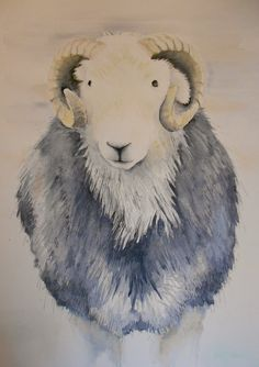 'Colin' a Herdwick tup commission recently completed www.beccafielding.com Aries, Sheep, Lamb, Watercolor Paintings, Cute, Animals, Fictional Characters, Inspiration, Shop Signs