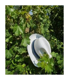 Classic white panama hat detailed with a contrasting black,blue and beige trim Shop online on www.sandalaki.com #sandalaki #sandalaki_com #leathersandals #madeingreece Classic White, Leather Sandals, Panama Hat, Cowboy Hats, Beige, Shop, Handmade, Collection, Black