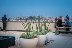 2175-Market-Street-12 « Landscape Architecture Works   Landezine