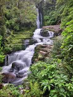 Forest Park, Waterfalls, New Zealand, Outdoor, Image, Outdoors, Outdoor Games, The Great Outdoors, Falling Waters