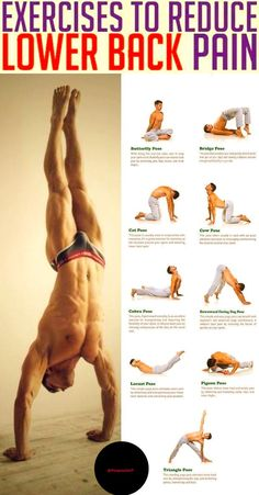 Whether from an injury or degenerative disease (such as osteoarthritis), most cases of back pain can be reduced with regular exercise and tailored workouts. Stretching, strengthening, and conditioning exercises can result in stronger muscles that support Yoga Fitness, Fitness Workouts, Physical Fitness, Lower Back Exercises, Stretching Exercises, Stretching For Flexibility, Exercise For Lower Back, Lower Back Yoga Stretches, Flat Stomach Exercises