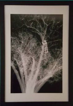 "Saatchi Art Artist Twyla Gettert; New Media, ""Tree Hugger- Black and White X-ray Photography , signed,Artist Proof"" #art"