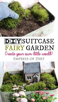 Create a miniature fairy garden in a vintage suitcase. Sweet idea for patio, garden, or inside your home. Kids love it. #fairygarden #miniaturegarden #containergarden #suitcase #weefolk