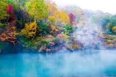 Color palette Photo by Fumiya Nakamura — National Geographic Your Shot