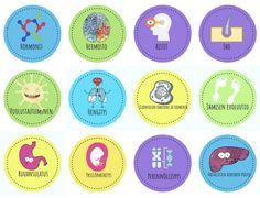 Oppimismerkit tekevät oppimisesta näkyvää ja kannustavaa – ritakeskitalo Bee, Science, Chart, Teaching, Honey Bees, Bees, Education, Onderwijs, Learning