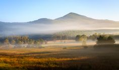 Cades Cove - If you haven't been here yet, you need to.