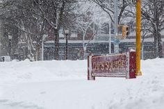 Davis Square after Winter Storm Nemo 2013.