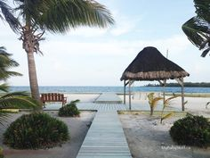 Ultimate Relaxation at Turneffe Island Resort in Belize