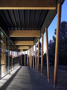 Galería - Centro Deportivo en Schuldorf Bergstrasse / Loewer + Partner Architekten - 5