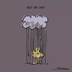Today is not my day.