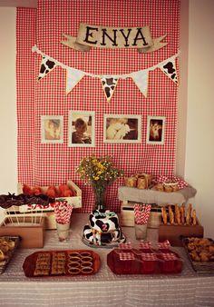 in the Atia's Room: La fiesta Campera de Enya