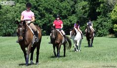 Before committing to owning a horse, make sure you're prepared for the unexpected expenses.