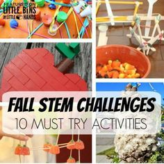 Want to plan fun Fall science activities and STEM challenges this season but don't know where to start? Start here! 10 Must Try Fall Science Activities.